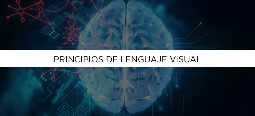 Principios de lenguaje visual que tu cerebro entiende