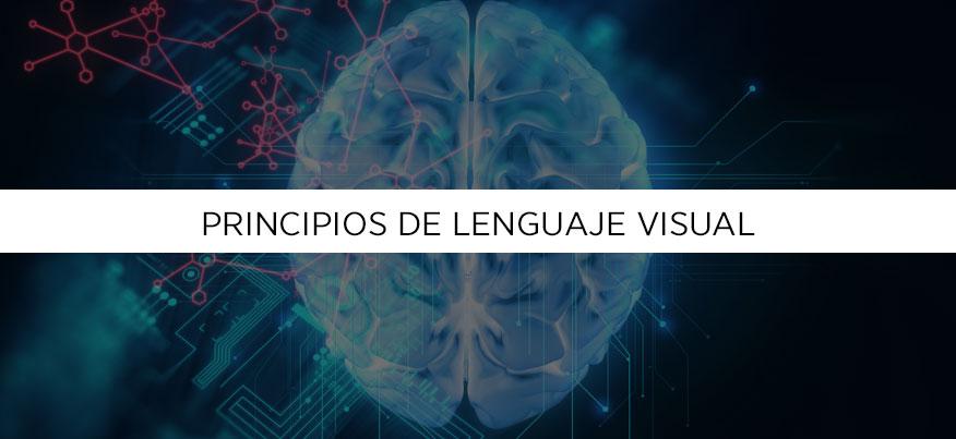 Principios de lenguaje visual que tu cerebro entiende.